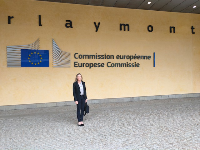 EuroCOP summary of issues raised with EU Commissioner for Home Affairs Yvla Johansson